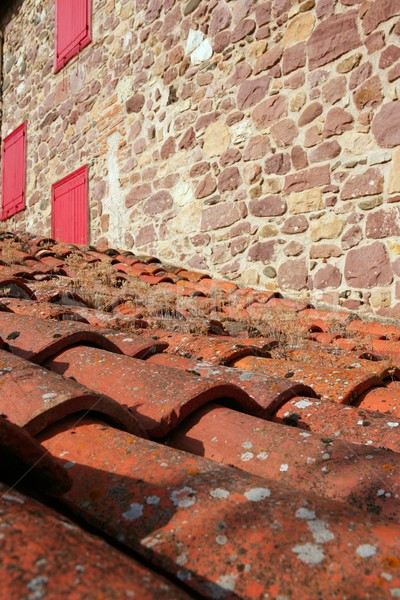Architectural grunge aged roof clay tiles Stock photo © lunamarina