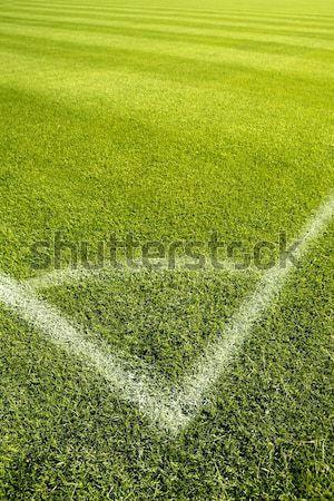 Football green grass field corner white lines Stock photo © lunamarina