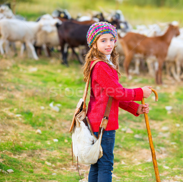 Gyerek lány boldog sereg birka bot Stock fotó © lunamarina