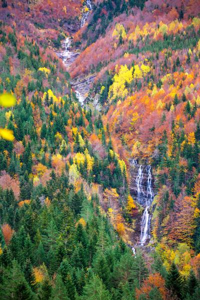 Autumn Bujaruelo Ordesa waterfal in colorful fall forest Huesca Stock photo © lunamarina