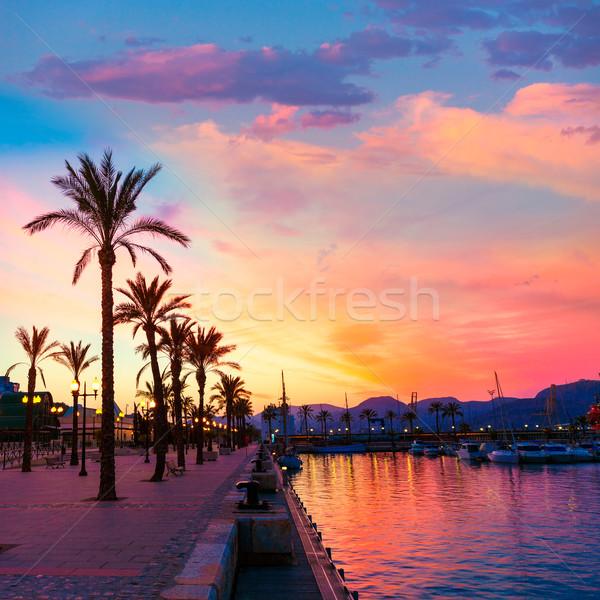 ポート マリーナ 日没 スペイン 地中海 ツリー ストックフォト © lunamarina