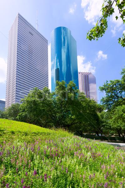 Houston sziluett nyugalom park Texas égbolt Stock fotó © lunamarina