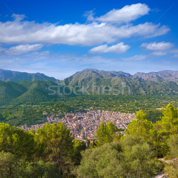 Luchtfoto majorca eiland Spanje bos bomen Stockfoto © lunamarina