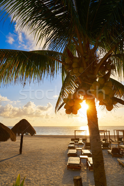 Riviera Maya sunrise beach in Mexico Stock photo © lunamarina