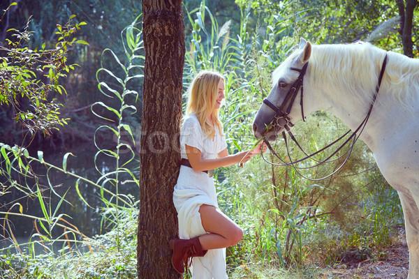 Szőke lány fű fehér ló mágikus fény Stock fotó © lunamarina
