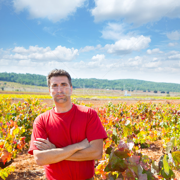 Harvester winemaker farmer proud of his vineyard Stock photo © lunamarina