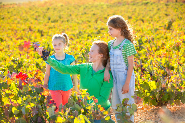 Stock photo: Mother and daughters on autumn vineyard smiling holding grape