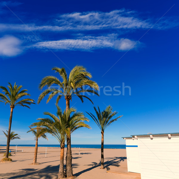 Foto stock: Playa · Valencia · mediterráneo · España · árbol · naturaleza