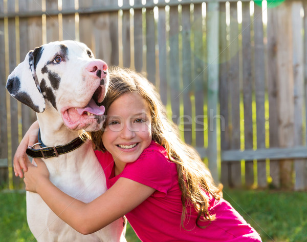 great dane and kid girl hug playing outdoor Stock photo © lunamarina