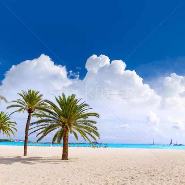 Majorca Platja Palmanova beach in Calvia Bol Teules Stock photo © lunamarina