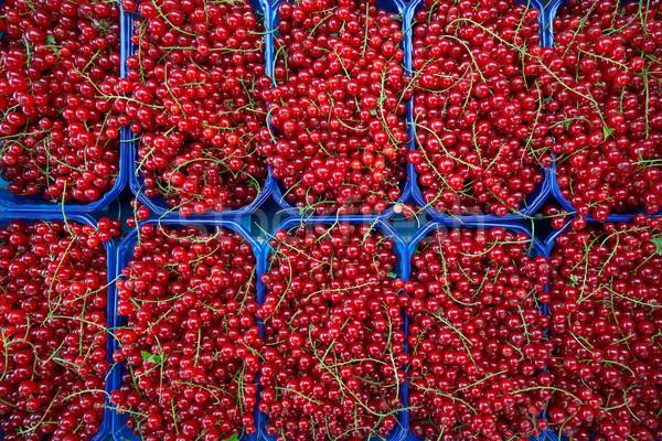 Piros ribiszke bogyók piac dobozok minta Stock fotó © lunamarina