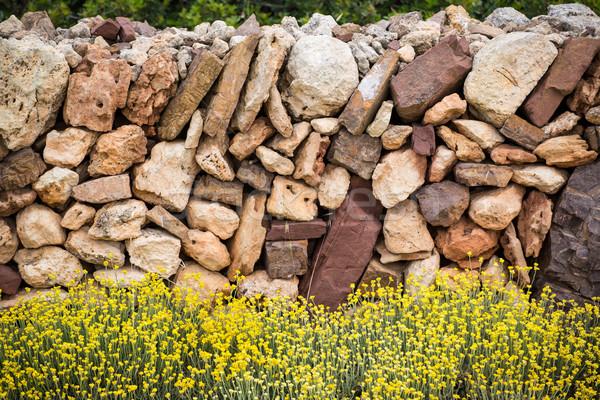 Duvarcılık bahar çiçekleri gökyüzü bahar çim doğa Stok fotoğraf © lunamarina