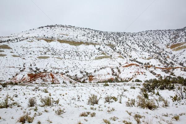 Nevada USA printemps neige montagnes première Photo stock © lunamarina