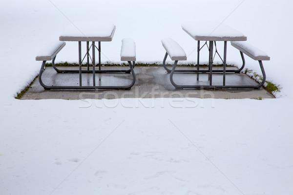 Nevada USA first snow in the park Stock photo © lunamarina