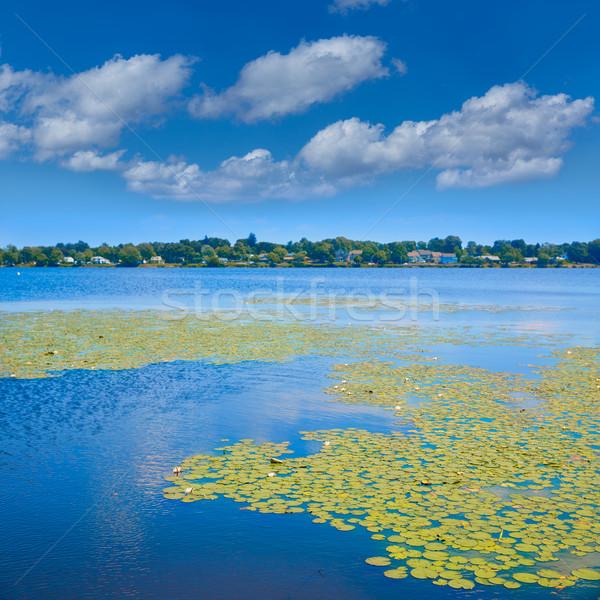 Jezioro Boston Massachusetts niebo wody horyzoncie Zdjęcia stock © lunamarina