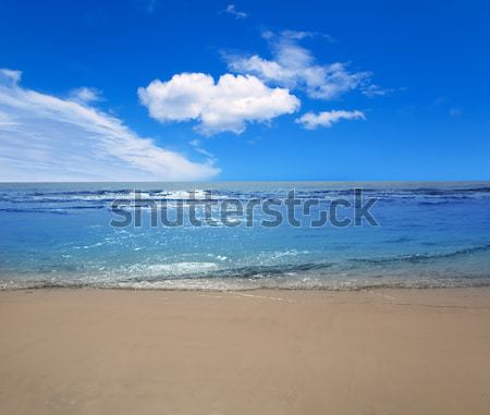 Palm plage Floride USA eau Photo stock © lunamarina