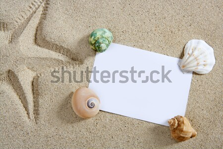Stock photo: beach vacation sand pearl shells snail blank paper