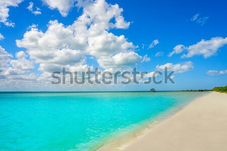 Arrecife beach Playa del Reducto in Lanzarote Stock photo © lunamarina