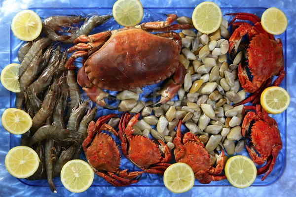 Crabs tellin shrimp clams and lemon Stock photo © lunamarina