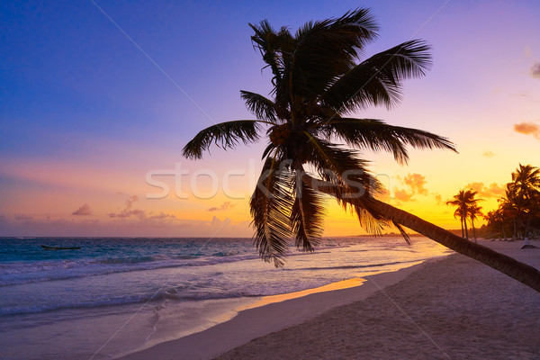 Tulum beach sunset palm tree Riviera Maya Stock photo © lunamarina