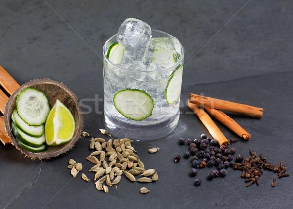 Gin tonic cocktail with lima cucumber vanilla cloves cardamom Stock photo © lunamarina