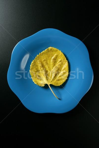 Metaphor, healthy diet low calories vegetarian leaf meal Stock photo © lunamarina