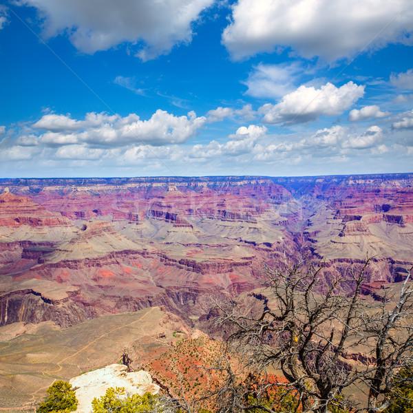 アリゾナ州 グランドキャニオン 公園 ポイント 米国 自然 ストックフォト © lunamarina