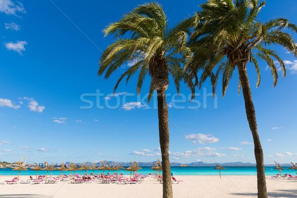 Mallorca Platja de Alcudia beach in Majorca  Stock photo © lunamarina