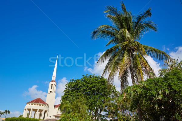 пляж Флорида США пальмами улице природы Сток-фото © lunamarina