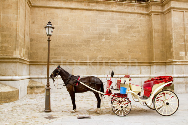 Fuvar ló katedrális Mallorca utca sziget Stock fotó © lunamarina