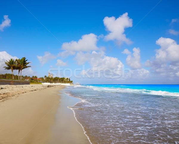 Pálma tengerpart tengerpart Florida USA égbolt Stock fotó © lunamarina