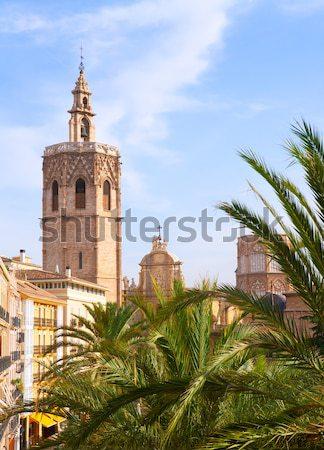 Valencia kathedraal palmbomen hemel boom tuin Stockfoto © lunamarina