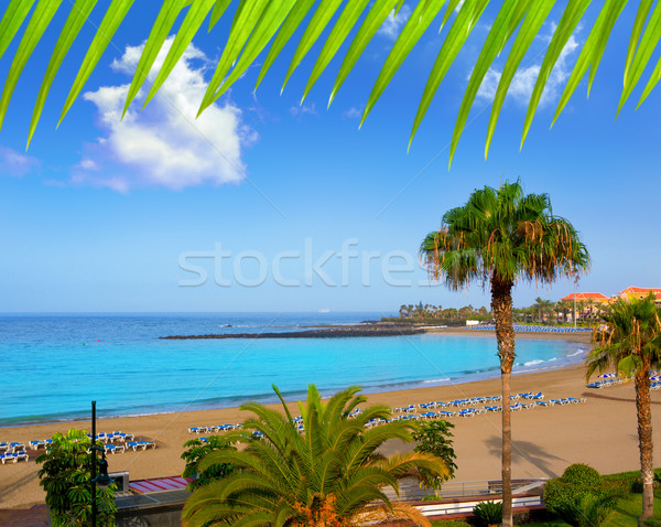 Las vistas beach Arona in costa Adeje Tenerife Stock photo © lunamarina