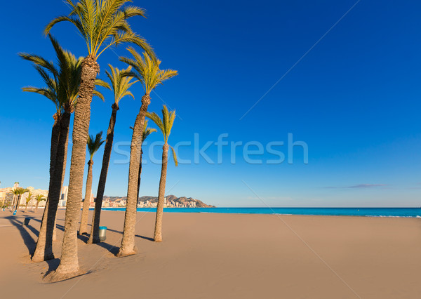 Benidorm Alicante playa de Poniente beach in Spain Stock photo © lunamarina
