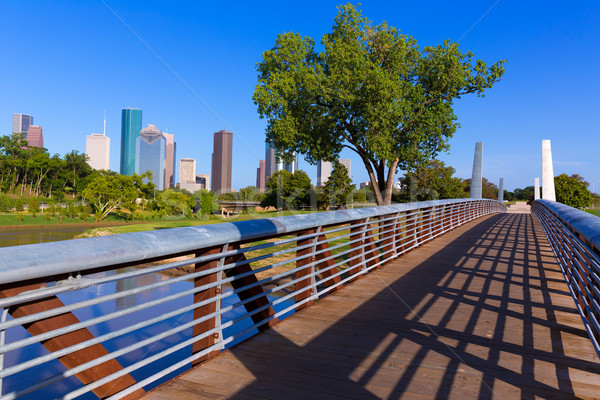 Houston skyline parco Texas USA cielo Foto d'archivio © lunamarina