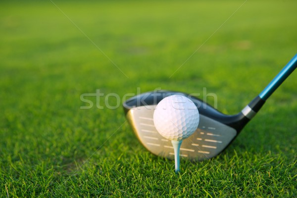 Golf balle club pilote herbe verte sport Photo stock © lunamarina