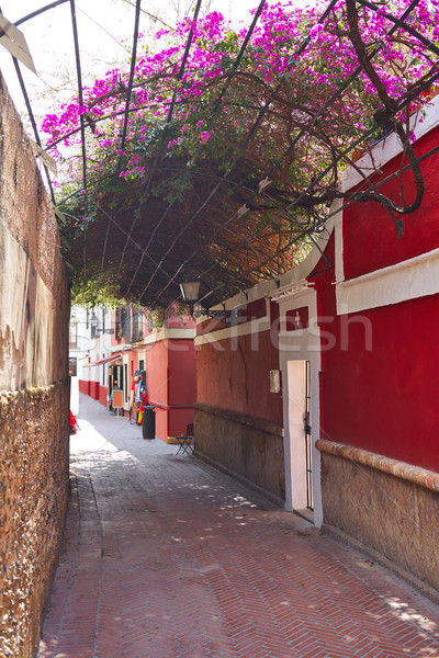 Callejon Agua street in Seville Andalusia spain Stock photo © lunamarina