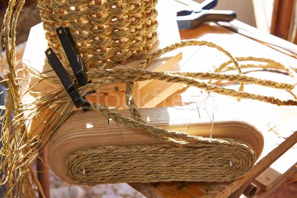 Esparto halfah grass used for crafts basketry Stock photo © lunamarina
