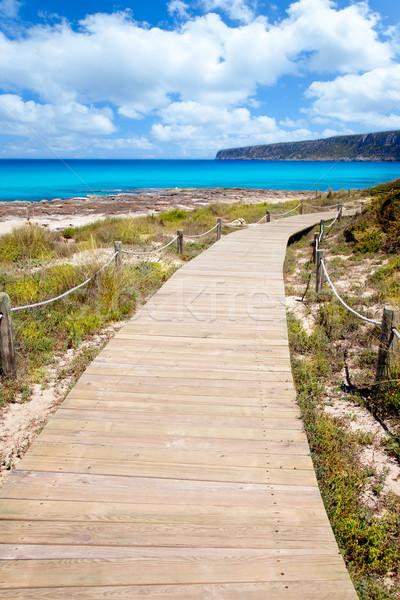 Balearic Formentera island wood beach way Stock photo © lunamarina