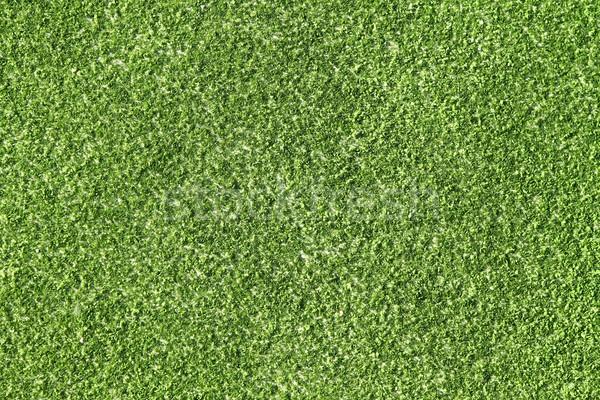 Tennis domaine herbe artificielle macro texture Photo stock © lunamarina