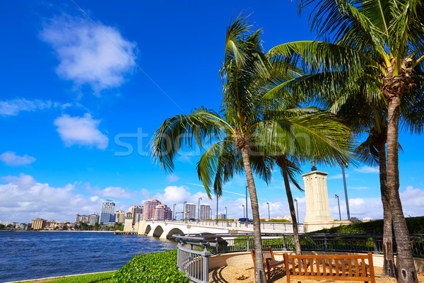 Palm пляж Skyline королевский парка моста Сток-фото © lunamarina