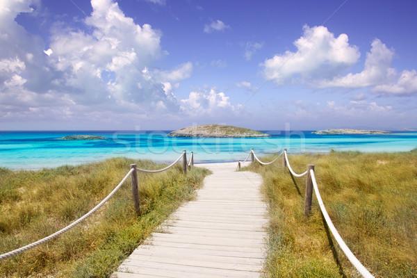 beach way to Illetas paradise beach Formentera Stock photo © lunamarina