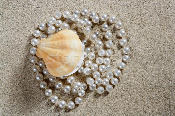 Photo stock: Plage · sable · blanc · perle · shell · clam · macro