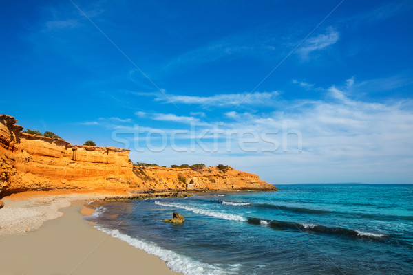 Ibiza island Platja Es bol Nou beach Ses Salines Stock photo © lunamarina