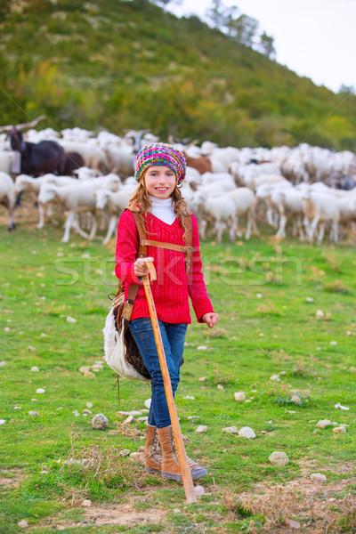 Kid meisje gelukkig schapen stick Stockfoto © lunamarina