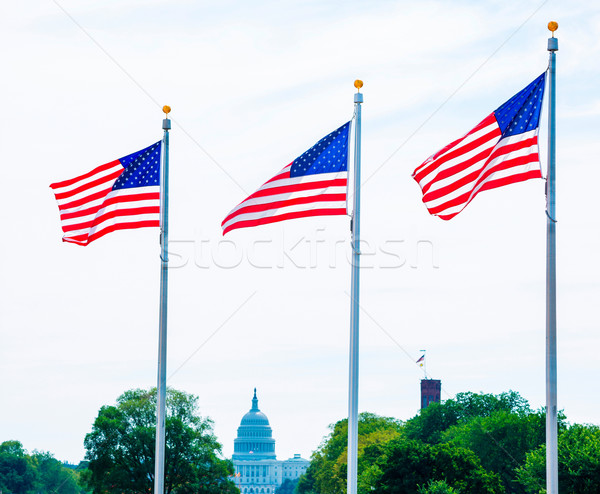 Washington Monument flags and Capitol DC USA Stock photo © lunamarina