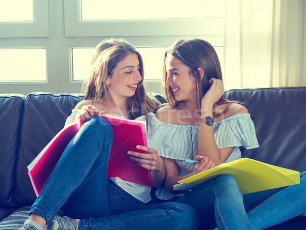Najlepszy przyjaciel dziewcząt studia praca domowa domu sofa Zdjęcia stock © lunamarina