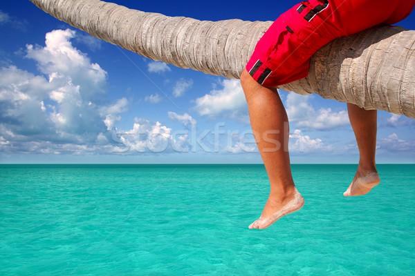 Caribbean palmeira praia turista pernas sessão Foto stock © lunamarina