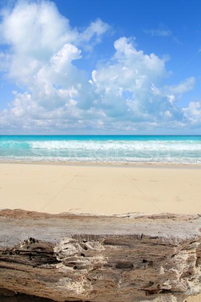 Caraïbes plage tropicale patiné calcaire mer fond Photo stock © lunamarina