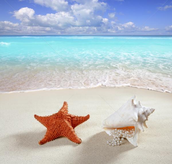 Foto stock: Areia · da · praia · pérola · colar · concha · starfish · verão